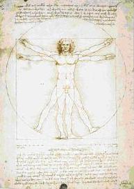 Człowiek witruwiański - studium proporcji ludzkiego ciała